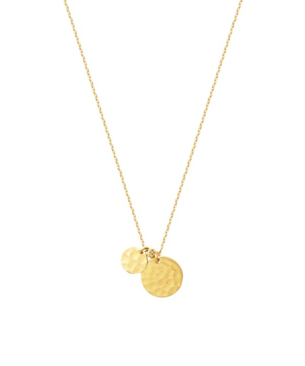 collier amy